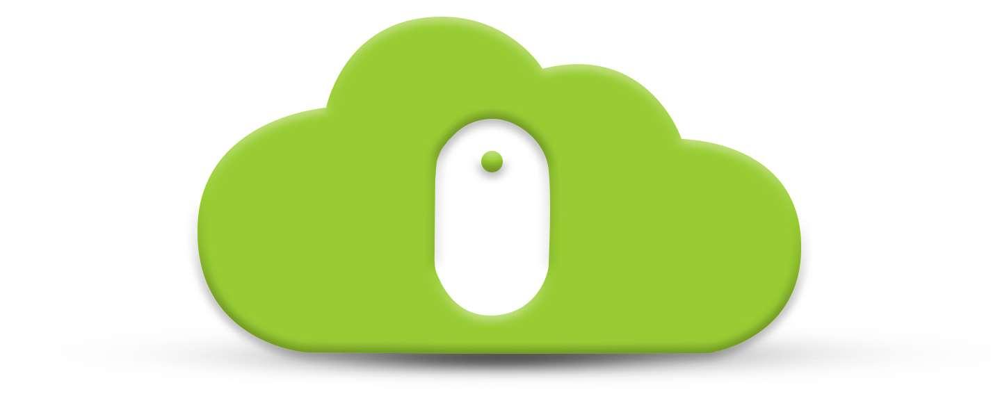 Managed Service Provider (MSP)